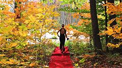 IW8-red_carpet