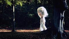 Poetry-Platten-Into_the_woods